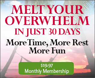 Melt Your Overwhelm in Just 30 Days Gold Membershi image