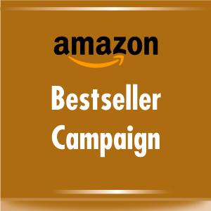 Amazon Bestseller Campaign image
